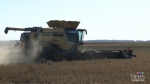 Cold, wet fall sends farmers scrambling