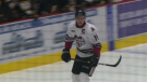 Isaac Ratcliffe playing for the Guelph Storm at the Sleeman Centre.