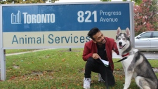 'Sober' the dog is reunited with its owner in this image posted to Twitter by Toronto Animal Services on Monday October 15, 2018. Sober was found hiding under a TTC bus after being struck by a vehicle in Scarborough. (@TOAnimalService /Twitter)