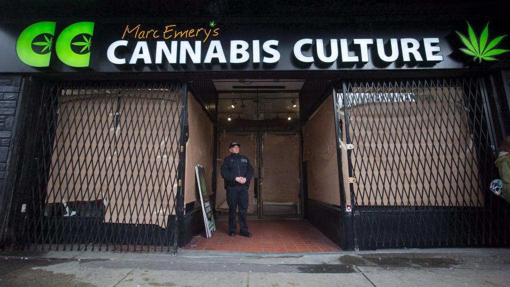 police raid on cannabis culture