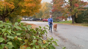Dr. Margaret Gale-Rowe takes Annie for a walk.
