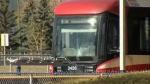 Fatal crash stops service at Erlton LRT station