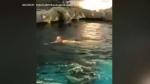 Naked swimmer Ripley's
