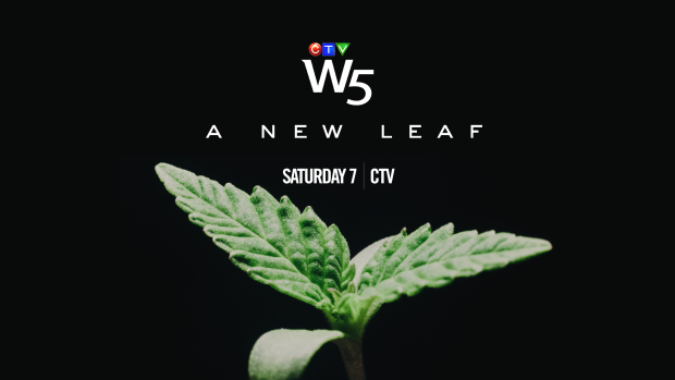W5: A New Leaf, Sat 7 CTV