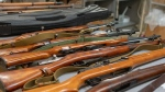 Police seized 29 rifles, many of them from the Second World War. (Source: WPRS)