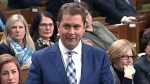 Scheer questions Trudeau over 'Jihadi Jack' case