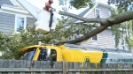 Wind causes havoc in Maritimes