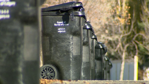 If your black bin isn't full should you pay for trash collection every week? Is pay-as-you-throw a possibility in Calgary?
