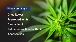 Pot: What can I buy