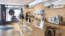 Some Vancouver dispensaries still open illegally