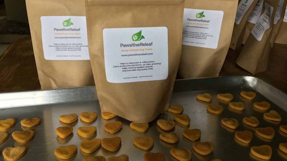 Pawsitive Releaf Dog Treats are hemp-infused dog treats hand-made in Musoka, Ont. (CTV News/KC Colby)