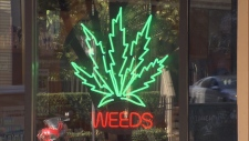 Weeds Glass and Gift Shop
