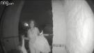 Woman leaves child at stranger's door
