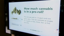 Parties, raids and pizza: Day 2 of legalization