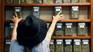 FILE - In this Aug. 11, 2016, file photo, assistant manager Jaclyn Stafford arranges glass display containers of marijuana on shelves at The Station, a retail and medical cannabis dispensary, in Boulder, Colo. (AP Photo/Brennan Linsley, File)