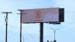 A billboard in Saskatoon advertising a North Battleford pot store. The billboard must be plain and follow strict federal guidelines. (Chad Hills/CTV Saskatoon)