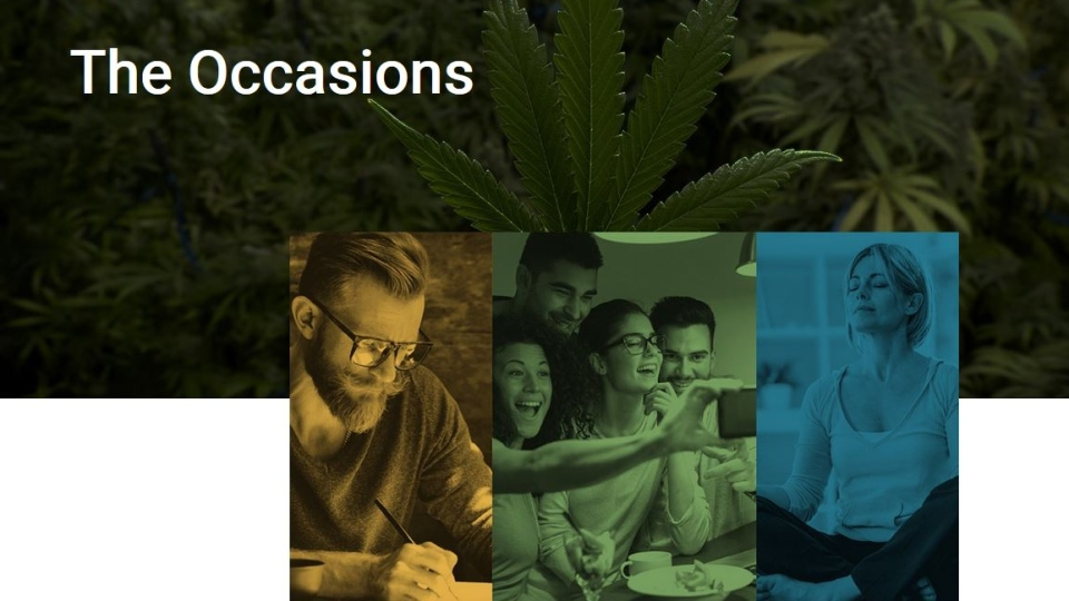 The Cannabis NB website has come under question for its product descriptions and images of people smiling and taking a selfie or holding a yoga pose -- things that may violate federal regulations.