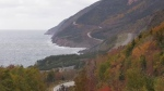 The fall colours are seen along Cape Breton's Cabot Trail in October 2018. (Darryl Reeves/CTV Atlantic)