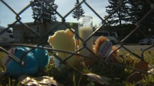 People in the community have set up a memorial for the young boy near the scene.