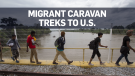 migrants caravan