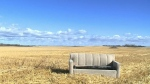 Couch ends up in farmer's field