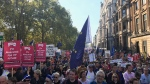 Tens of thousands of protesters marched through central London on Saturday to demand a new referendum on Britain's departure from the European Union. (theRealWardster /Twitter)