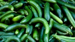 Cucumbers can be seen in this file photo.(AP Photo/Markus Schreiber)
