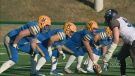 Hilltops defeat Rifles 58-5