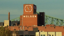 The historic Molson brewery
