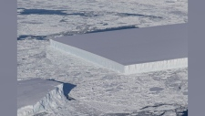 A perfectly rectangular iceberg is seen in this image. (NASA ICE/Twitter)