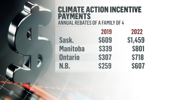 Carbon tax rebates