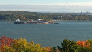 CTV Montreal: Carbon tax rebates