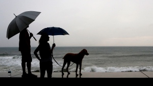 A couple and their dog stand of the seawall prior the landfall of Hurricane Willa, in Mazatlan, Mexico, Tuesday, Oct. 23, 2018. (AP Photo/Marco Ugarte)