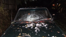ice bomb lantzville