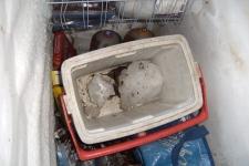 lantzville ice bomb truck