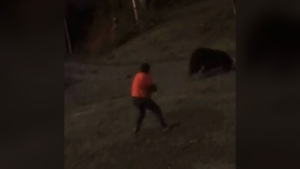 Man shoots grizzly in terrifying encounter