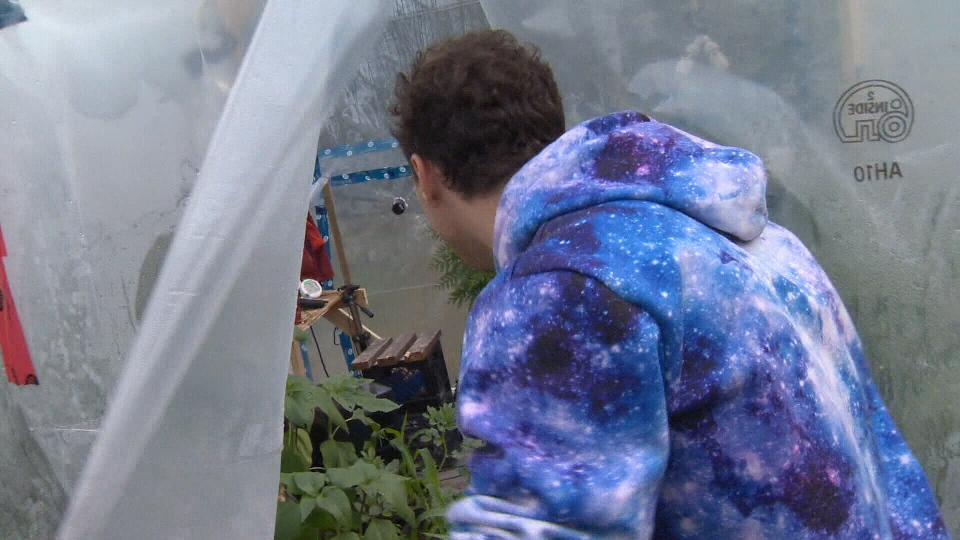 YouTuber Kurtis Baute is getting ready to seal himself inside a 10x10 greenhouse for three days. Oct. 23, 2018. (CTV Vancouver Island)