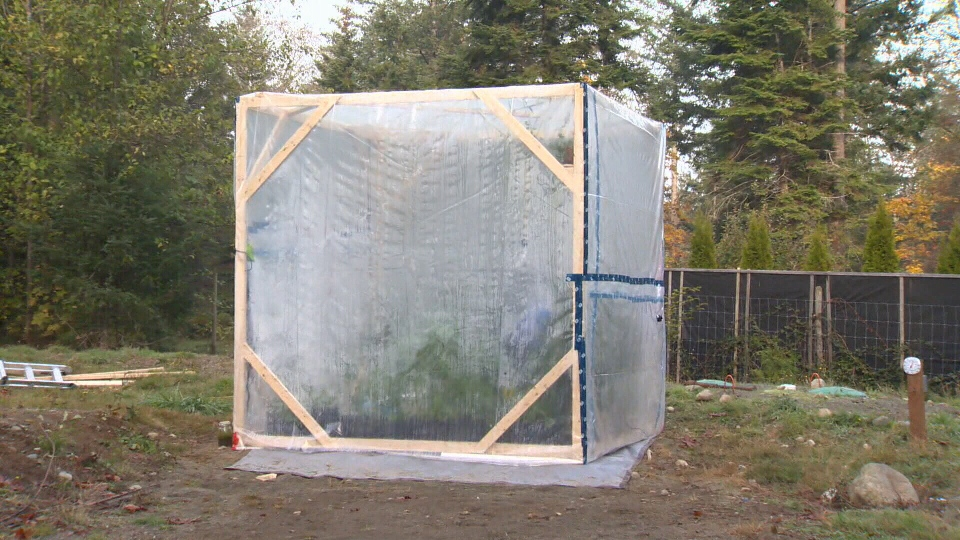 The 10x10 greenhouse is equipped with enough plants to produce oxygen for three days, but Baute says he'll be very sedentary just in case. Oct. 23, 2018. (CTV Vancouver Island)