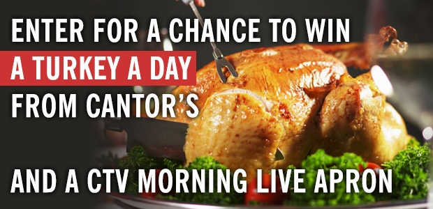 Cantor's Turkey a Day Banner
