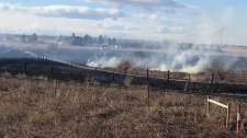 Rocky View County grass fire
