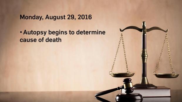 Timeline-3---Aug-29.jpg