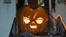 A massive pumpkin grown in a Saanich backyard carved to be Chucky from the 'Child's Play' movies has neighbours in awe. Oct. 29, 2018. (CTV Vancouver Island)