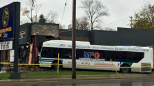 An LTC bus crashed into an Oxford Street vet clinic in London, Ont. on Wednesday, Oct. 31, 2018. (Sacha Long/CTV London)