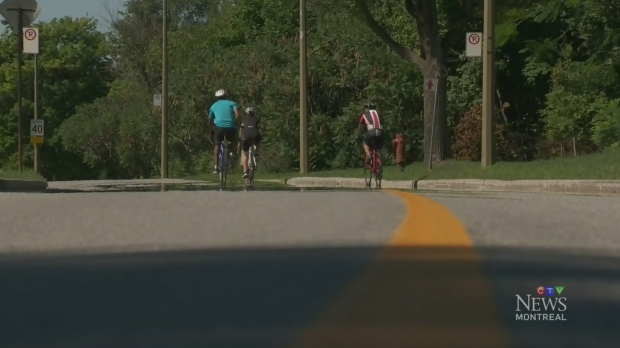 City declares Mount Royal traffic pilot project a success | CTV Montreal News