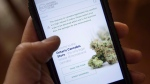The Ontario Cannabis Store website is pictured on a mobile phone Ottawa on Thursday, Oct. 18, 2018. THE CANADIAN PRESS/Sean Kilpatrick