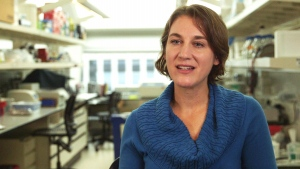 Viviane Labrie, a Canadian neuroscientist and geneticist who led the research team out of Michigan's Van Andel Research Institute, speaks to CTV News about the new study.