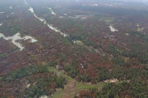 Fores fire Parry Sound 33 finally declared out October 31, and burned over 11,300 hectares