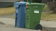 A City of Calgary green cart next to a recycling cart. (CTV News)