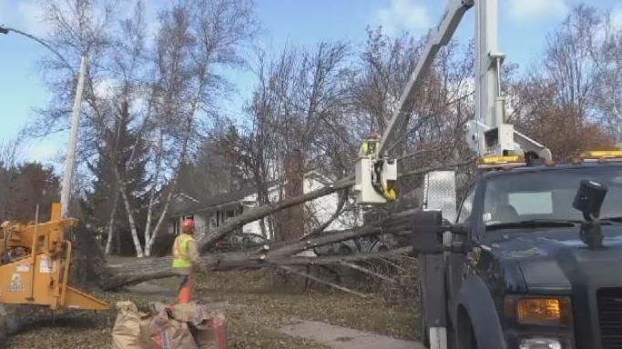 NB Power crews clean up debris after a powerful storm moved through the province on Nov. 3, 2018.