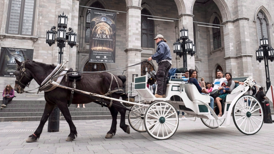 In this file photo, a caleche rides in front of the Notre Dame Basilica Tuesday, September 5, 2017 in Montreal. (THE CANADIAN PRESS / Paul Chiasson)